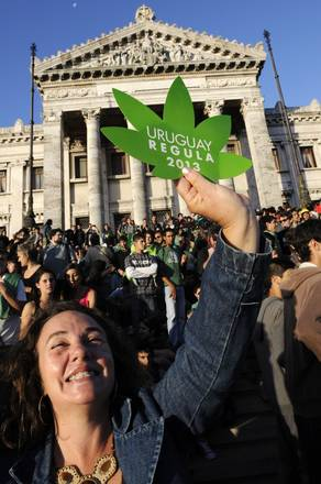 MÉXICO: Elaboran fármacos caseros con marihuana