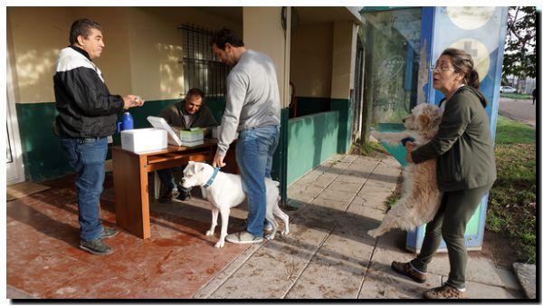 NECOCHEA: Actividades por el Día del Animal
