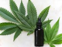 El aceite de cannabis ya es legal en el deporte
