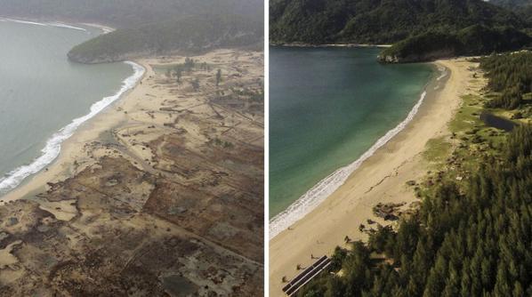 #tsunami2004