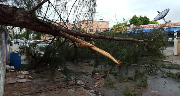 ERIKA. Más de 7 mil desplazados y 800 viviendas afectadas
