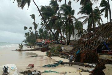 María también derriba postes del tendido eléctrico y árboles en República Dominicana