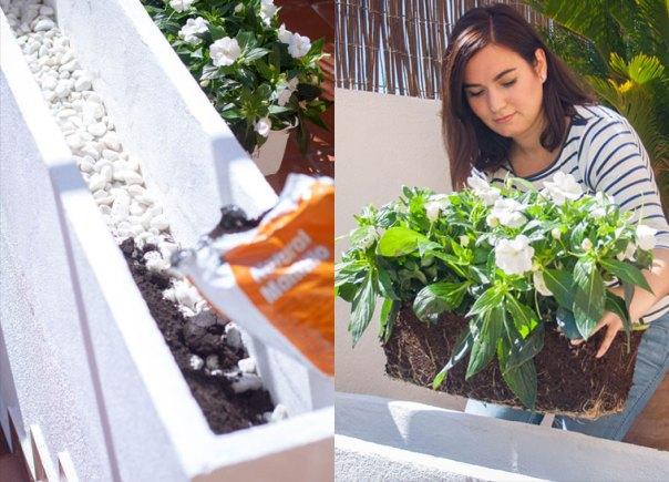 DIY-sembrar-jardinera-4