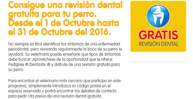 Revisión dental gratuita para tu perro