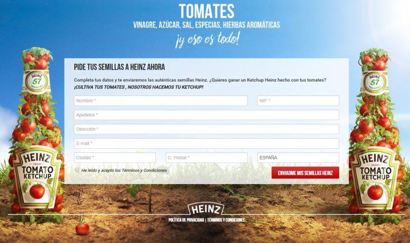 Consigue gratis semillas de tomate Heinz