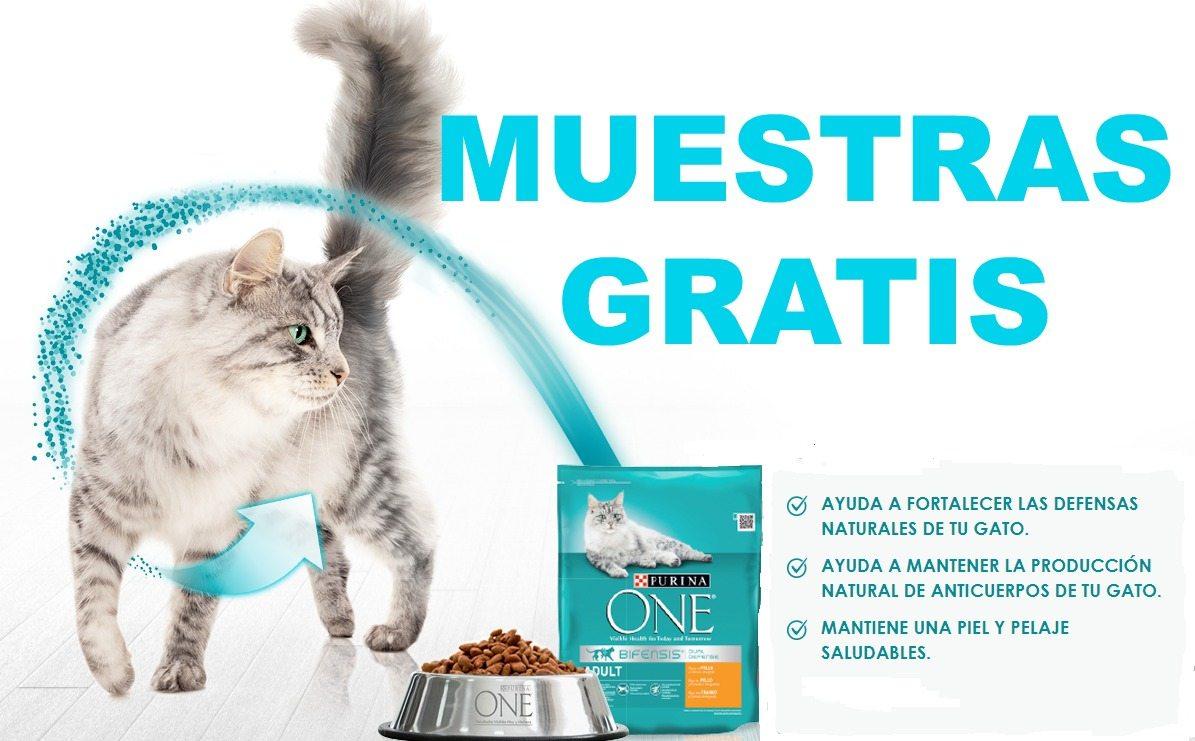 Consigue muestras gratis de comida para gatos