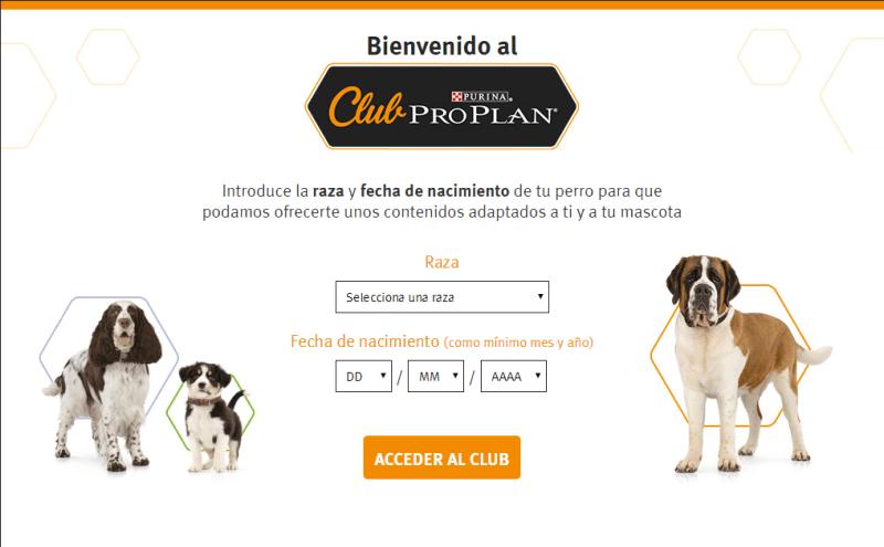 Consigue regalos gratis para tu mascota