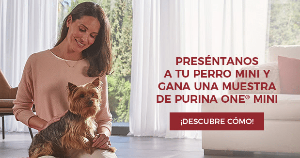 Muestras gratis de Purina One Mini