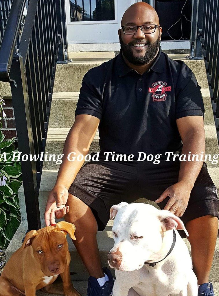Dog and Puppy Training for Madison Wisconsin | A Howling Good Time