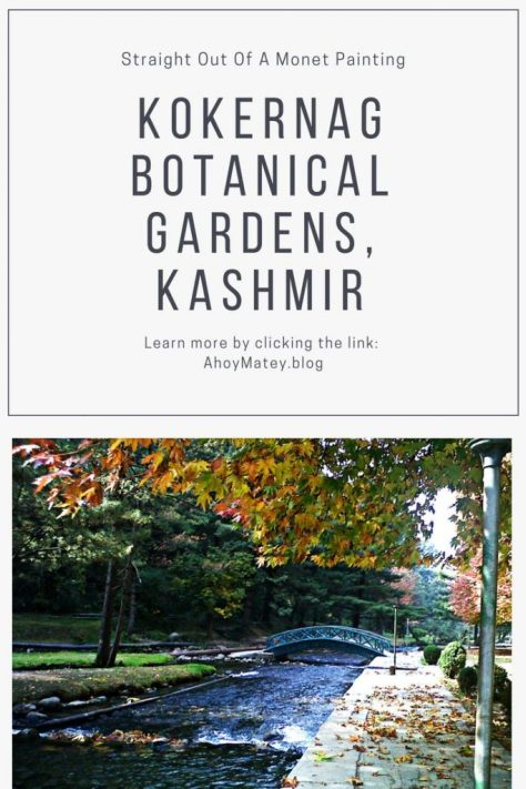 The Kokernag Botanical Gardens in Anantnag, India, left me stunned with their beauty. Unlike the Mughal gardens, the Kokernag Garden was developed by the Jammu and Kashmir Tourism department. Be sure to put them on your itinerary on your trip to Kashmir. Click the link to read the article on my trip to Kashmir. #kashmirtourism