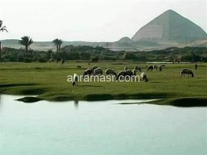 دهشور بقعة سحرية أثرية علي ارض مصر …بالصور
