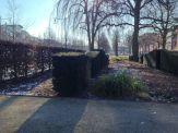 Große Straße in Ahrensburg – Foto: Mia