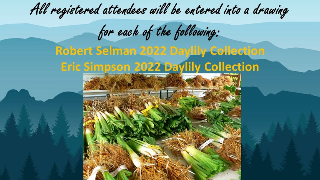 All registered attendees will be entered into a drawing for each of the following: 1 Robert Selman 2022 Daylily Collection and 1 Eric Simpson 2022 Daylily Collection