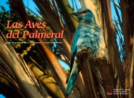 aves palmeral