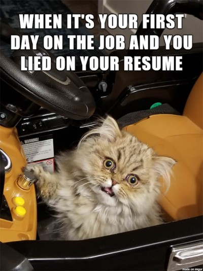 First Day New Job Meme : first, First, Resume, AhSeeit