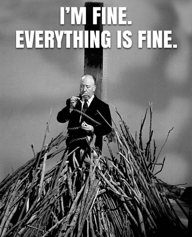 Everythings Fine Meme : everythings, Everything, AhSeeit