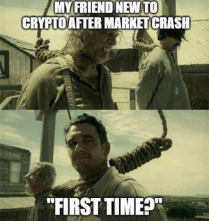 Bitcoin crash meme