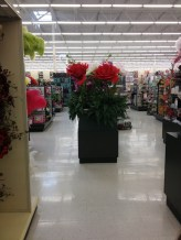 Our stop today is Hobby Lobby to pick up some items for a baby shower I'm helping to plan. Really, who doesn't need GIGANTIC fake roses? I know I've always wanted some.