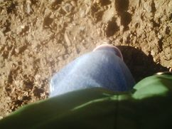 His feet at the bird park.