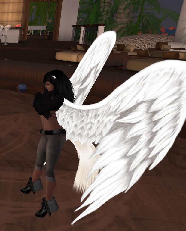 only-bad-photography-can-clip-nats-wings