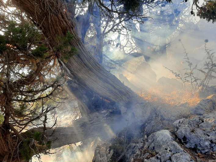 حريق في الفريديس العكارية
