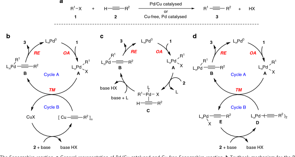 medium resolution of 1 the sonogashira reaction a general representation of pd cu catalysed and