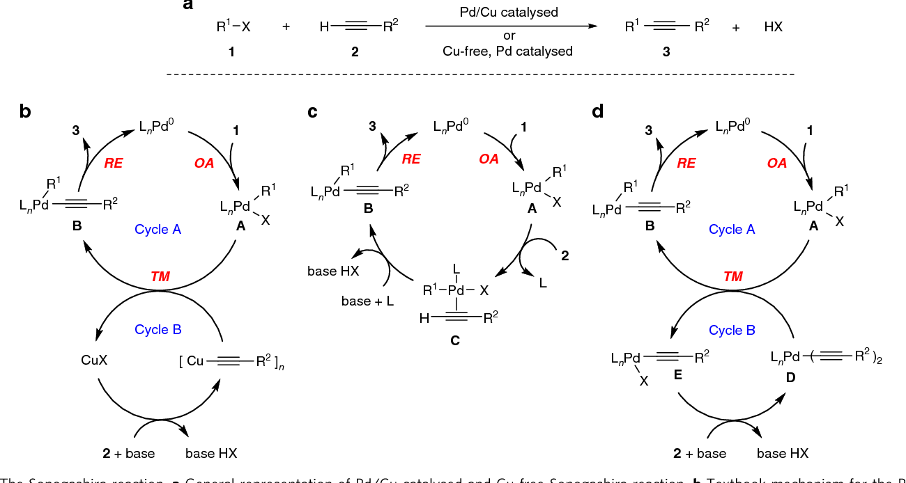 hight resolution of 1 the sonogashira reaction a general representation of pd cu catalysed and