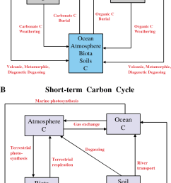 box model diagrams for the carbon cycle boxes represent reservoirs and [ 928 x 1338 Pixel ]