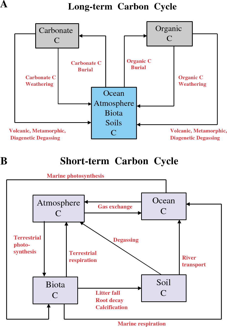 hight resolution of box model diagrams for the carbon cycle boxes represent reservoirs and