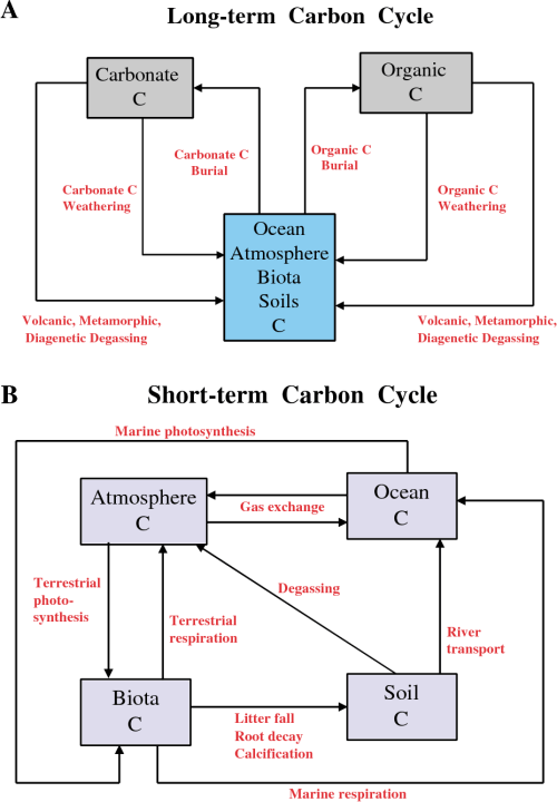 small resolution of box model diagrams for the carbon cycle boxes represent reservoirs and