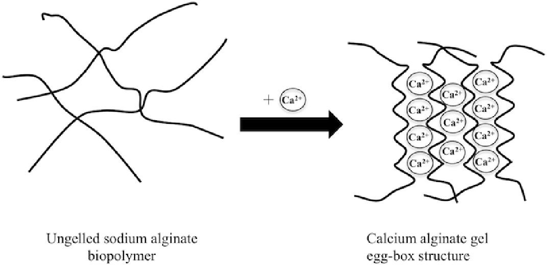 Alginate gel particles-A review of production techniques