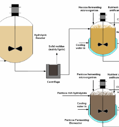 simplified process flow diagram for separate enzymatic hydrolysis and fermentation shf [ 1188 x 836 Pixel ]