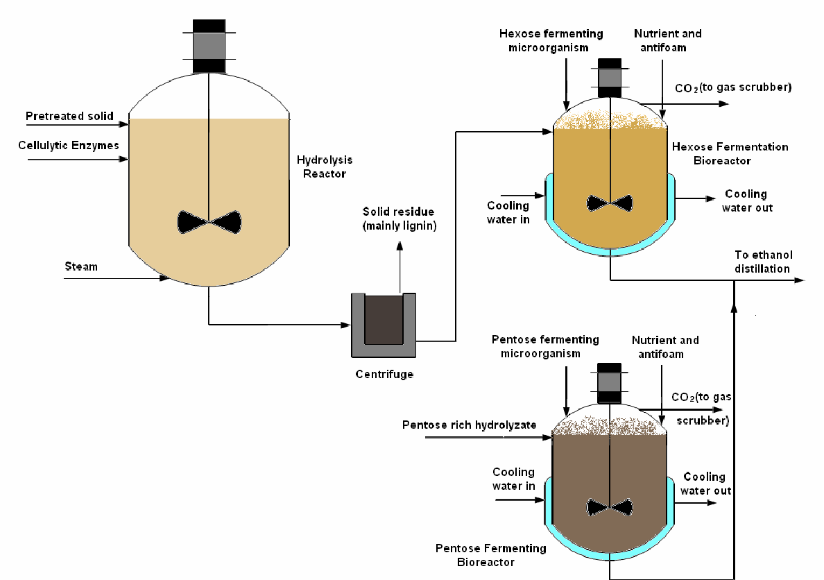 hight resolution of simplified process flow diagram for separate enzymatic hydrolysis and fermentation shf