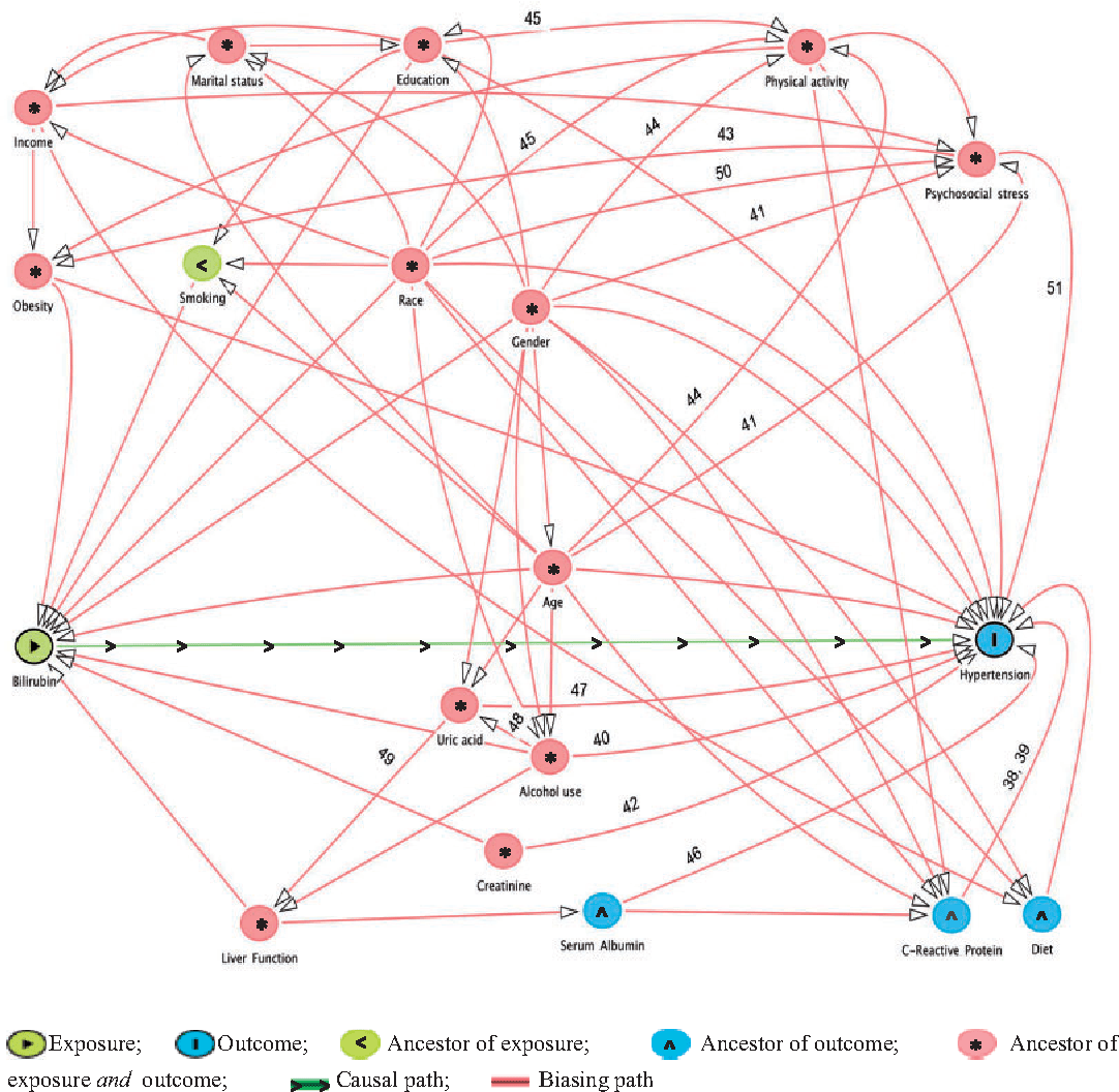 hight resolution of directed acyclic graph dag for the unconfounded effect of serum bilirubin