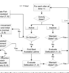 model diagram describing the steps and decisions each simulated otter follows for each [ 1136 x 900 Pixel ]