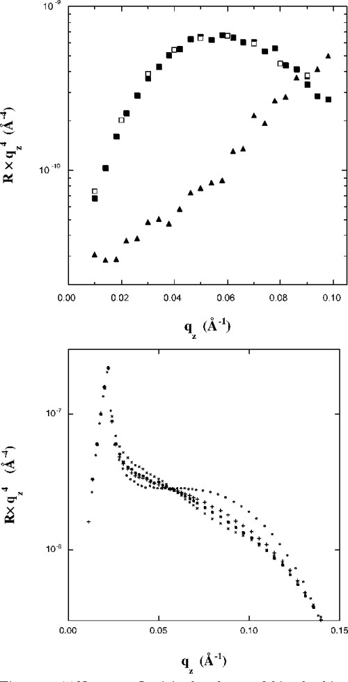 small resolution of  a neutron reflectivity data for myoglobin adsorbing to cu ii