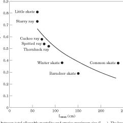 Ray And Skate Diagram American Standard Toilet Parts The Population Dynamics Of Little Leucoraja Erinacea Winter Ocellata Barndoor Dipturus Laevis Predicting Exploitation