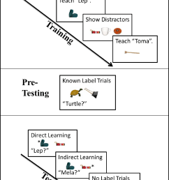 figure 3 summary of procedure for the word learning task  [ 1148 x 1672 Pixel ]