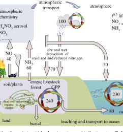 the processing and fluxes of reactive nitrogen in terrestrial and marine systems and [ 1224 x 702 Pixel ]