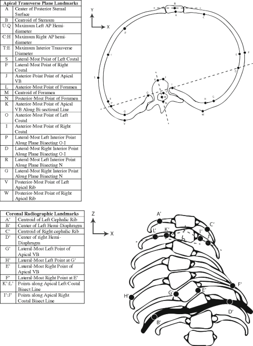 small resolution of a comprehensive review of thoracic deformity parameters in scoliosis semantic scholar
