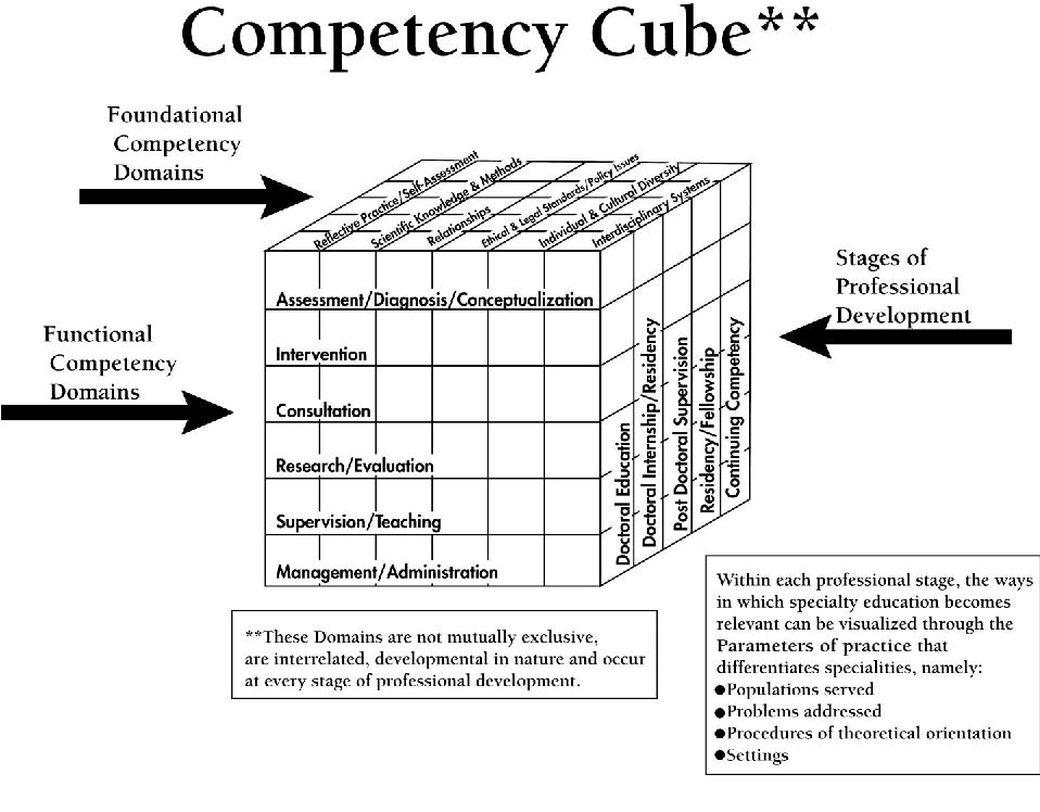 Figure 1 from A Cube Model for Competency Development