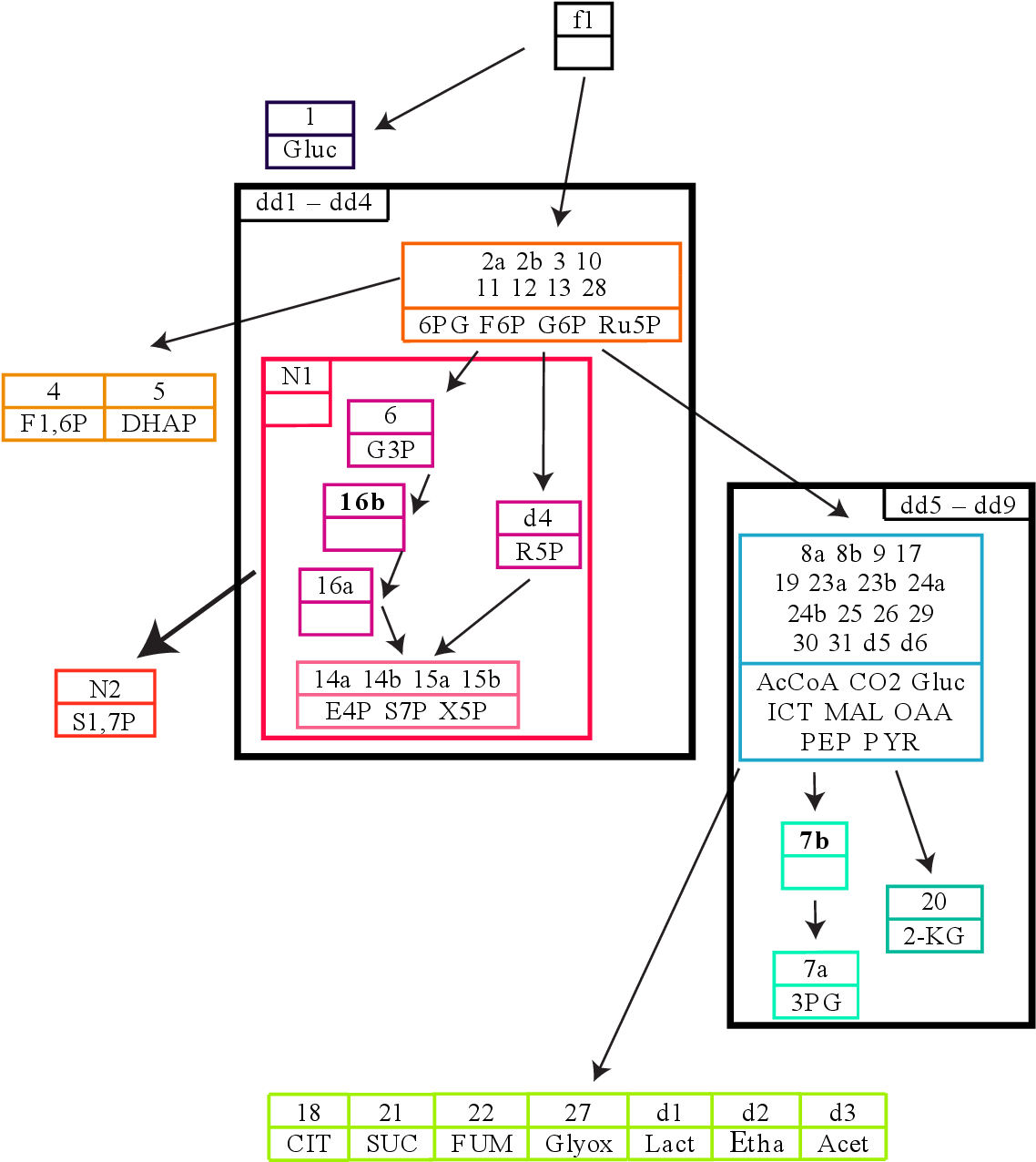 hight resolution of figure 8 7 the full flux influence graph of the tca cycle model invariants a