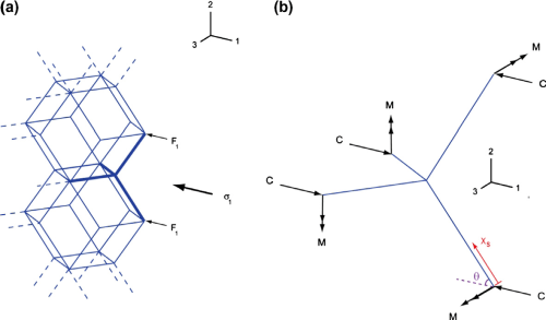 small resolution of  a schematic of a tessellated rhombic dodecahedron cellular structure under