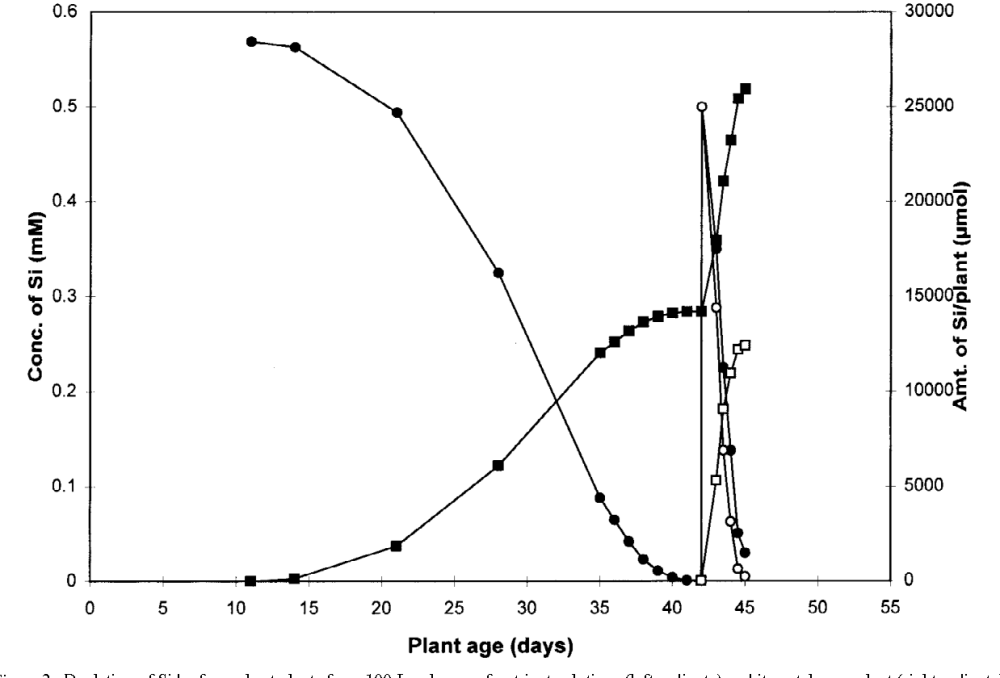 medium resolution of depletion of si by four wheat plants from 100 l volumes of