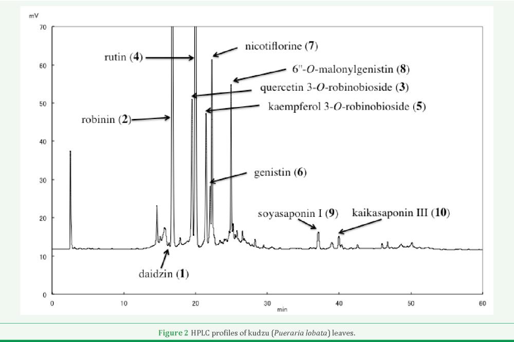 medium resolution of figure 2 hplc profiles of kudzu pueraria lobata leaves
