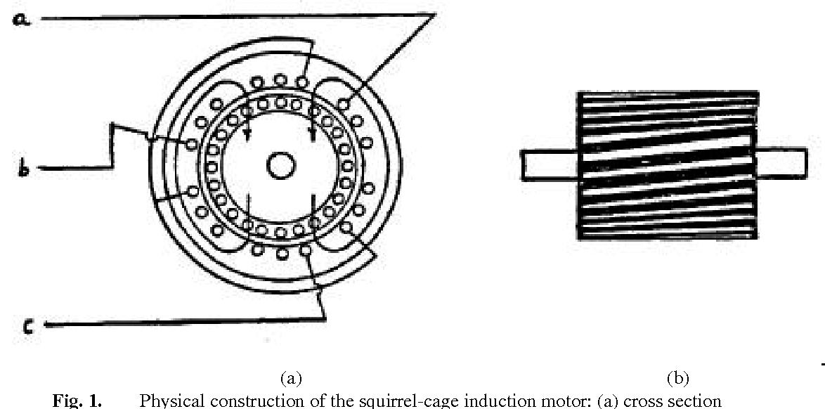 Single Phase Ac Motor Wiring Diagram Single Phase Ac Motor Wiring