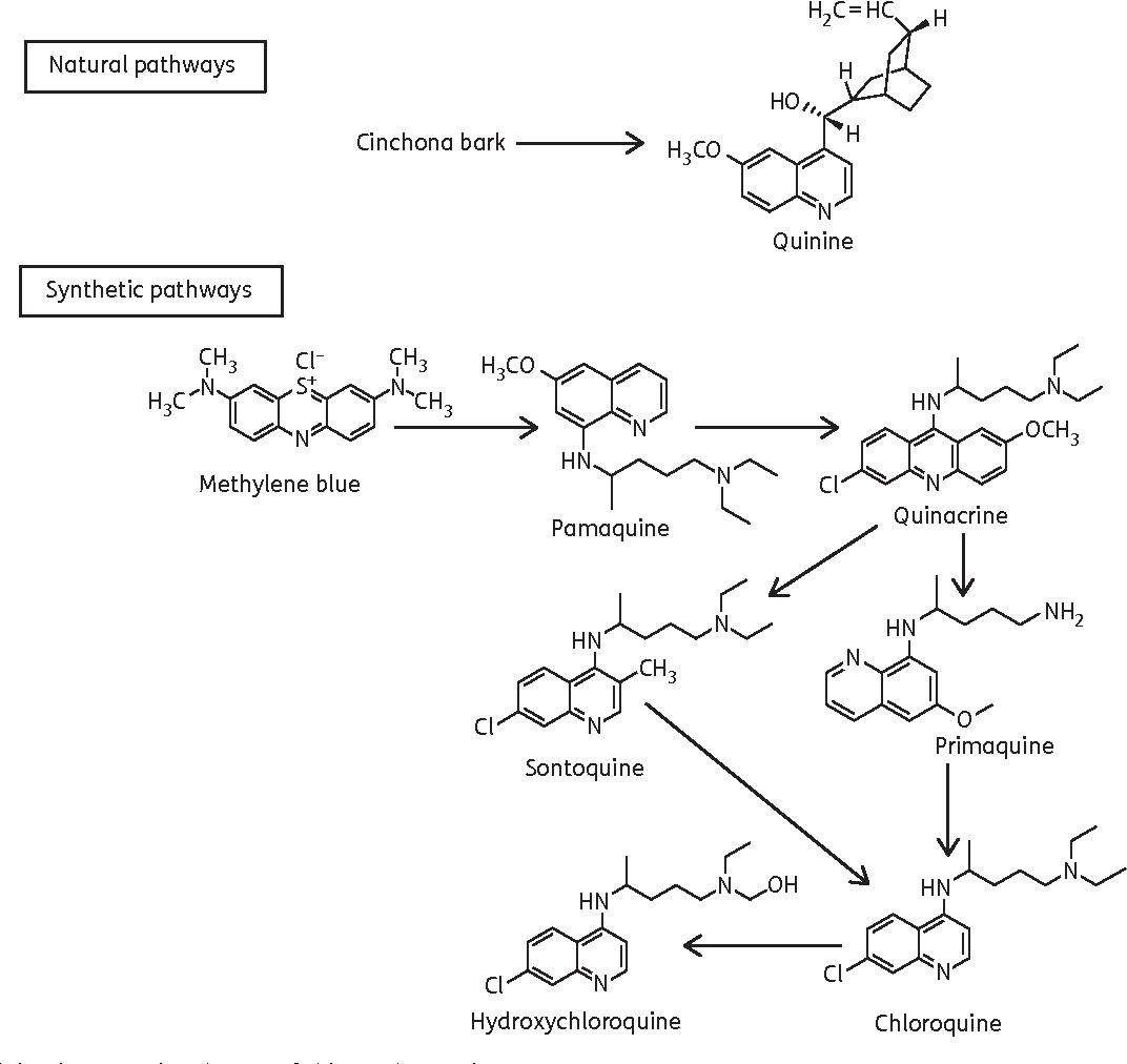 medrol 4 mg dose pak instructions