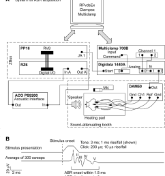 heating pad wiring diagram figure 2 from a physiological and behavioral system for hearingschematic of the abr setup a wiring [ 1034 x 1142 Pixel ]