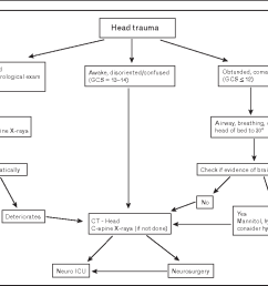 figure 2 clinical care pathway for traumatic brain injury [ 1114 x 782 Pixel ]