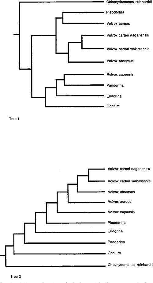 small resolution of figure 7